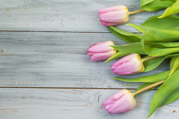 Pink tulips on wooden background, top view