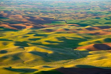 The rolling hills farmland at sunset. Palouse Hills in Washington, United State of America.