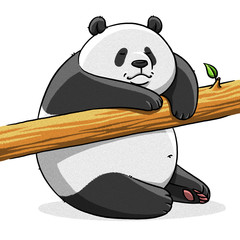 funny cartoon cute fat panda bear illustration