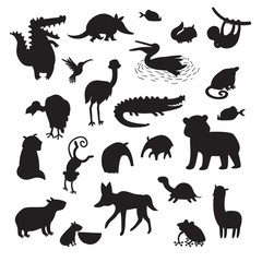 Sourth America animals  vector illustration. Black contour big vector set isolated on white background. Preschool, baby, continents, education, drawn