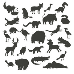 North America animals silhouettes, isolated on white background vector illustration. Black contour big vector set. Preschool, baby, continents, education, drawn