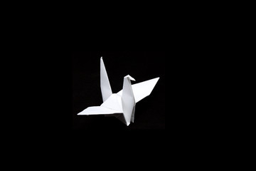 paper crane  isolated on black background