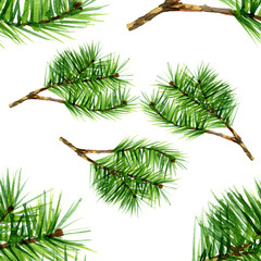 Watercolor pine set on white background