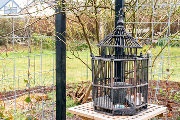 Wooden birdcage in a garden