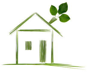 draw concept green house with leaf  isolated on white