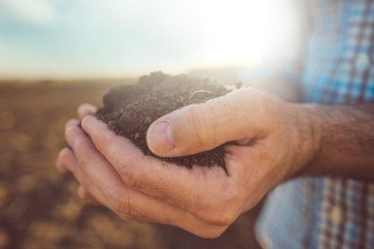 Farmer holding pile of arable soil, close up