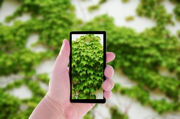 携帯電話と緑