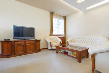 Living room with luxury leather furniture