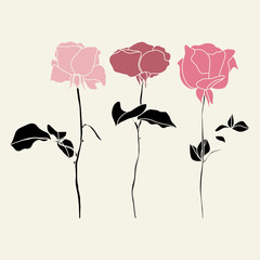 Vector set of pink roses illustraton