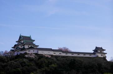 桜の咲いてる和歌山城