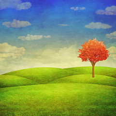 Panorama of green field with a tree on cloudy sky background