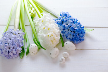 Fresh pink, blue and white flowers hyacinths with Easter eggs in ray of light on white painted wooden background. Place for text.