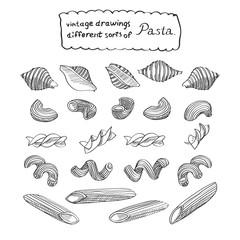 Different sorts of pasta sketch is great design element for italian restaurants and pasta restaurants.