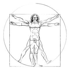 The Vitruvian man. Leonardo da Vinci 's Drawing on white, human anatomy, Vector