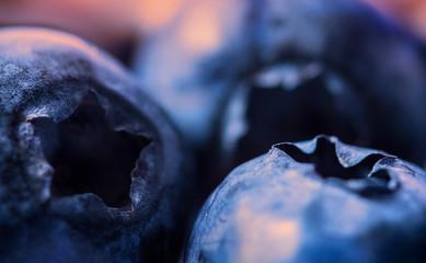 Bluebeerries closeup on warm background
