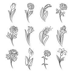 Collection of outlined flowers.