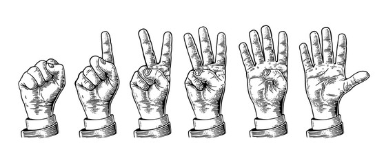Set of gestures of hands counting from zero to five. Male Hand sign. Vector vintage engraved illustration isolated on white background