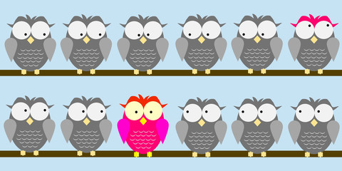 Be different: pink owl among grey owls!
