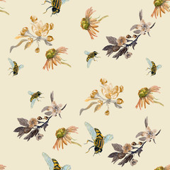 Pattern with bees. A watercolor drawing. Insects and flowers of Apple.