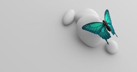 Türkiser Schmetterling sitzend auf Stein