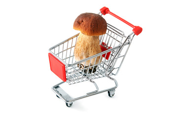 shopping cart with penny bun on white isolated background
