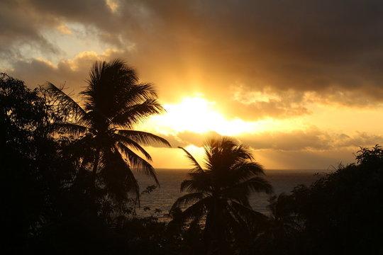 Sonnenaufgang Los Patos Paraiso