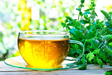 glass of peppermint tea with peppermint plant