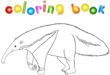 Funny cartoon ant-eater. Coloring book for kids