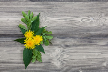 Yellow dandelions on a wooden background