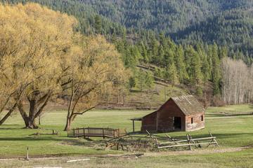 Barn by scenic trees in Idaho.