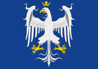 duchy of modena historical flag, italy
