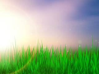 Sunlight. Summer background with green grass and blue sky. Vector illustration