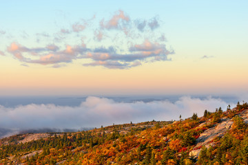 Wall Mural - Mountain View of Trees in Autumn with Fog at Sunrise