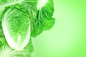 fresh chinese cabbage  on green background
