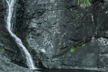 Cedar Creek waterfall in Mount Tambourine, Queensland.