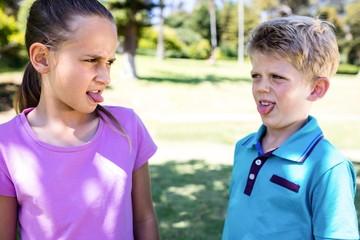 Siblings teasing each other