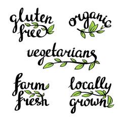 Vector lettering - organic natural food, vegan and vegetarians menu