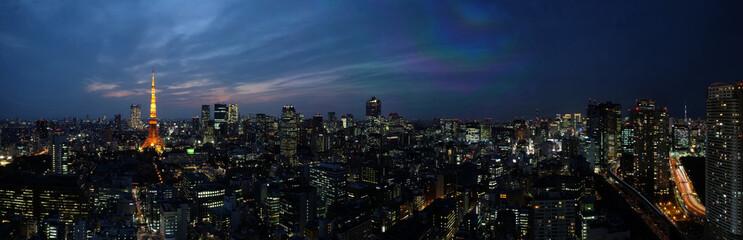 東京夜景スカイライン