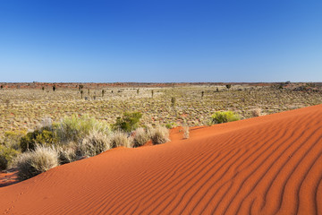 Red sand dune on a clear day, Northern Territory, Australia