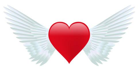 Coeur - ailes