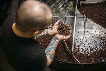 Caucasian coffee roaster testing beans in machinery