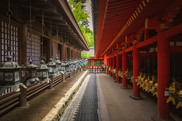Pathway between two rows of shrine lanterns on the buildings of Kasuga Taisha Shinto Shrine in Nara, Japan Wall mural