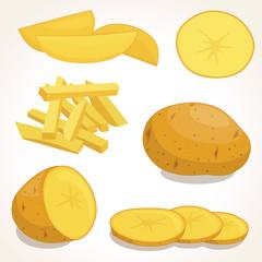 Potatoes vector illustration isolated on background. Set of whole, slices, half, lobule, circle potatoes.