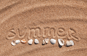 Summer background. Word summer and seashells on the sand