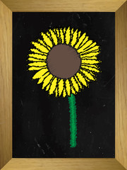 Sunflower Drawn on a Chalkboard