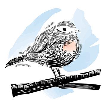 Illustration of bird in linocut style