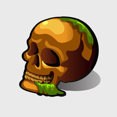 Old human skull, vector image for your needs