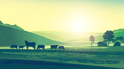 Summer landscape, with cows feeling morning, a day.
