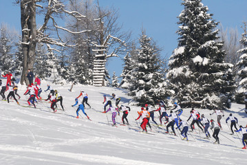 LIBEREC, CZECH REPUBLIC - APRIL 3, 2016: Group of cross country skiers running in forest for a win. Race runners at he the start of winter cross-country tracks trail.