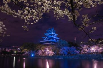 広島城ライトアップ